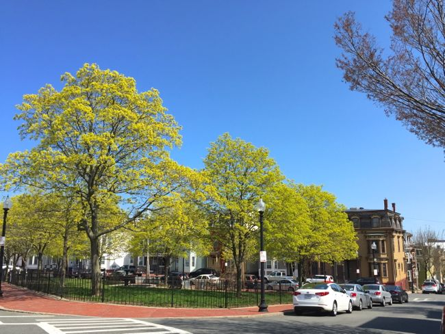 Putnam Square East Boston 1